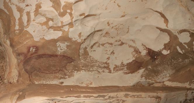 Endonezya'da dünyanın en eski mağara çizimi keşfedildi